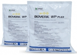 BOVERIL WP  PL 63